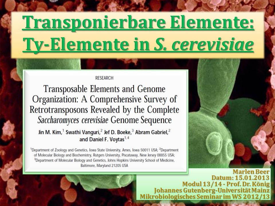 Transponierbare Elemente: Ty-Elemente in S. cerevisiae