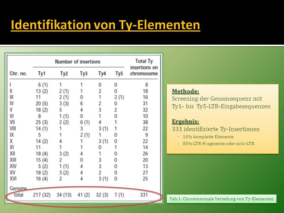 Identifikation von Ty-Elementen