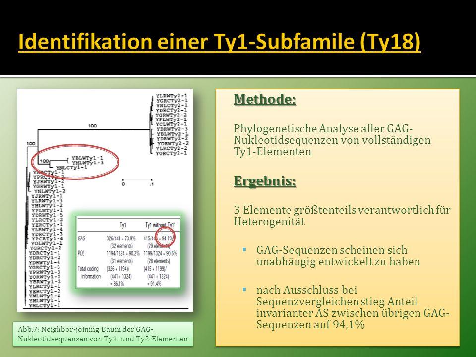 Identifikation einer Ty1-Subfamile (Ty18)