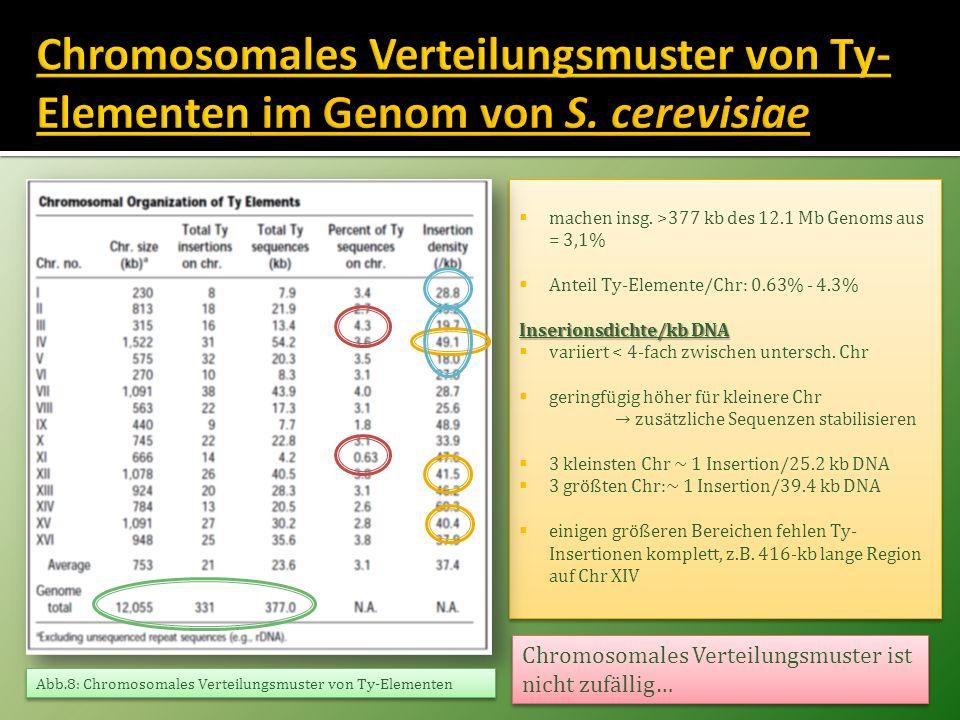 Chromosomales Verteilungsmuster von Ty-Elementen im Genom von S