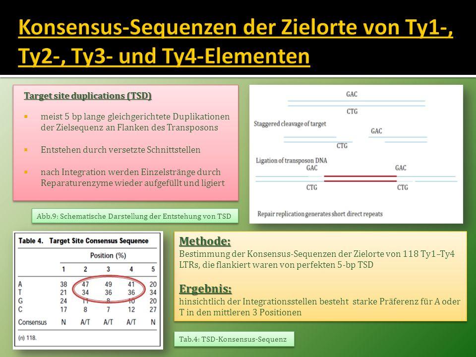 Konsensus-Sequenzen der Zielorte von Ty1-, Ty2-, Ty3- und Ty4-Elementen