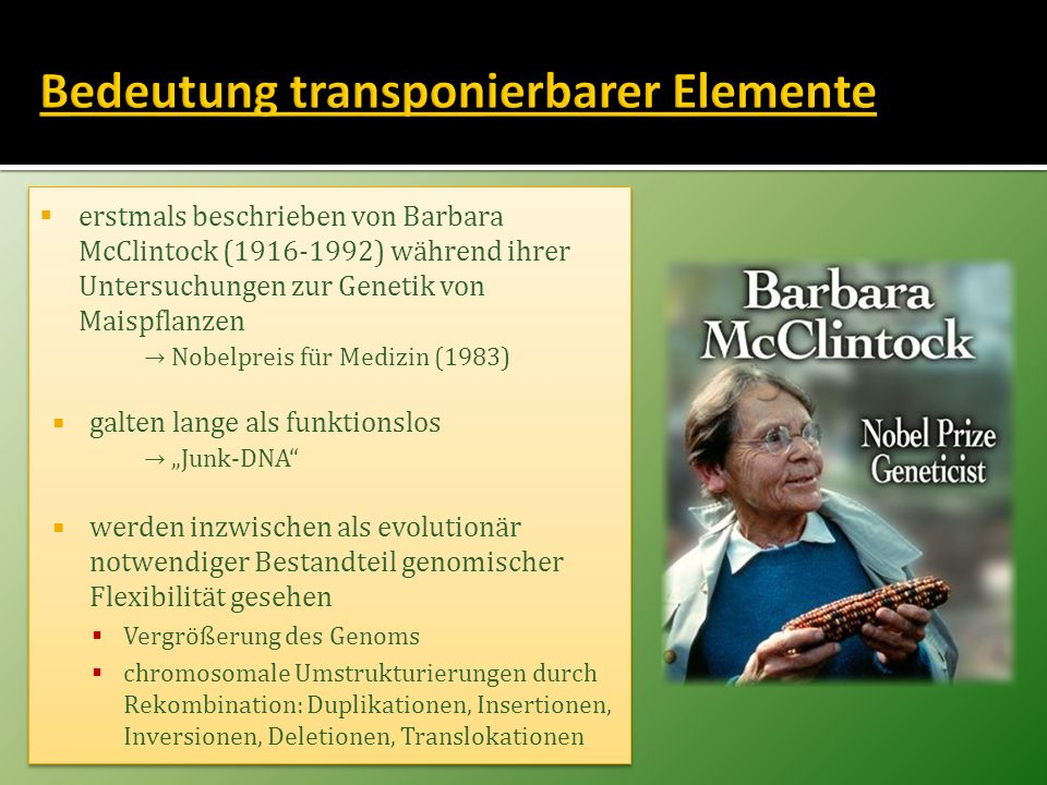 Bedeutung transponierbarer Elemente