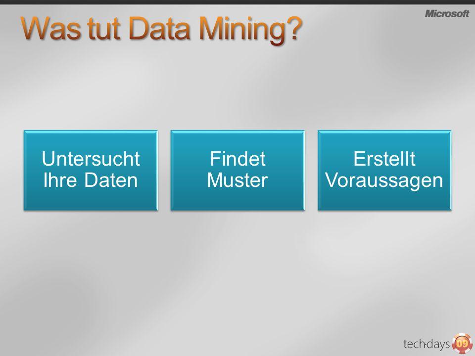 Was tut Data Mining Untersucht Ihre Daten Findet Muster