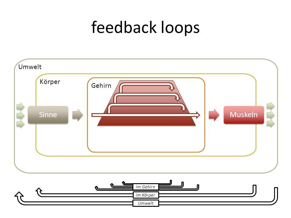 feedback loops Sinne Muskeln Umwelt Körper Gehirn im Gehirn im Körper