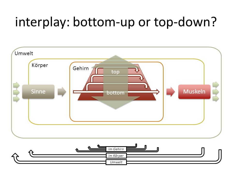 interplay: bottom-up or top-down