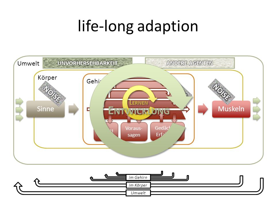 life-long adaption Entwicklung NOISE NOISE NOISE Sinne Muskeln Umwelt