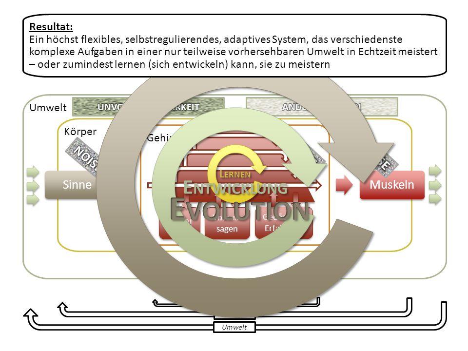 Evolution Entwicklung NOISE NOISE NOISE Sinne Muskeln Resultat: