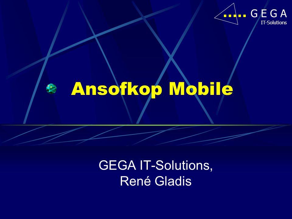 GEGA IT-Solutions, René Gladis