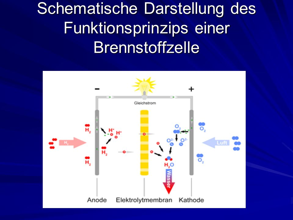 Schematische Darstellung des Funktionsprinzips einer Brennstoffzelle