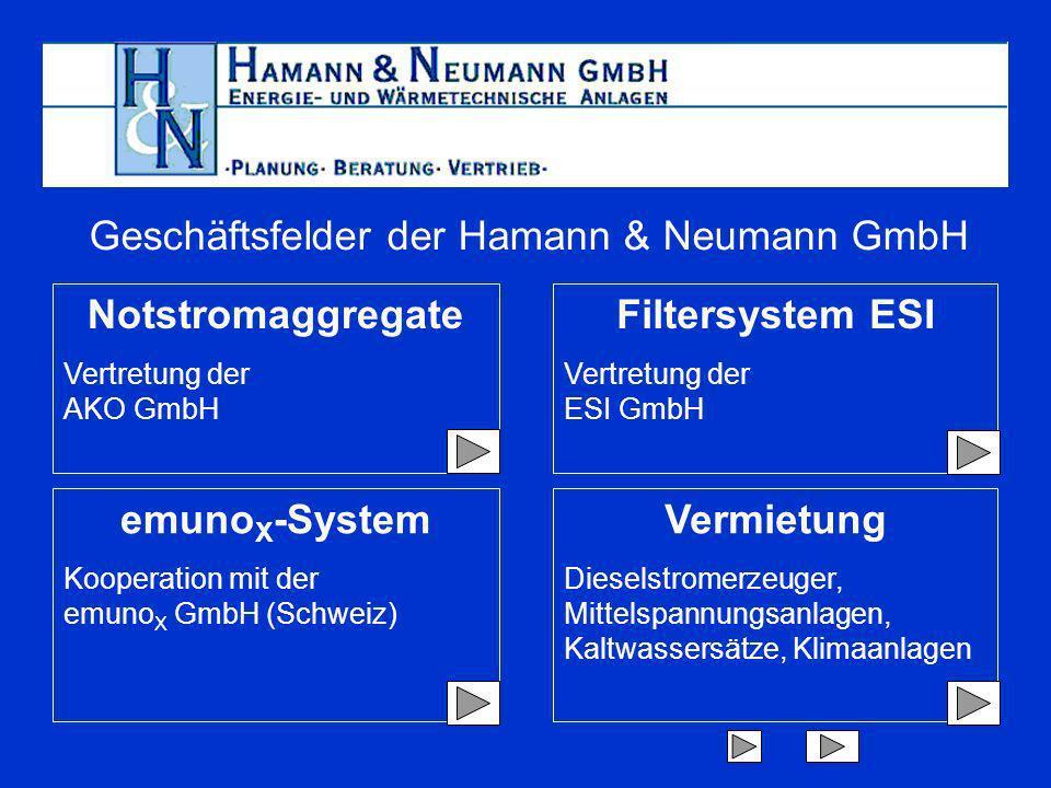 Geschäftsfelder der Hamann & Neumann GmbH