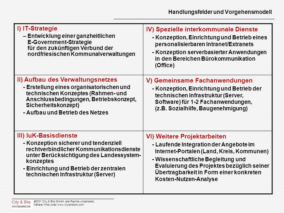 Handlungsfelder und Vorgehensmodell