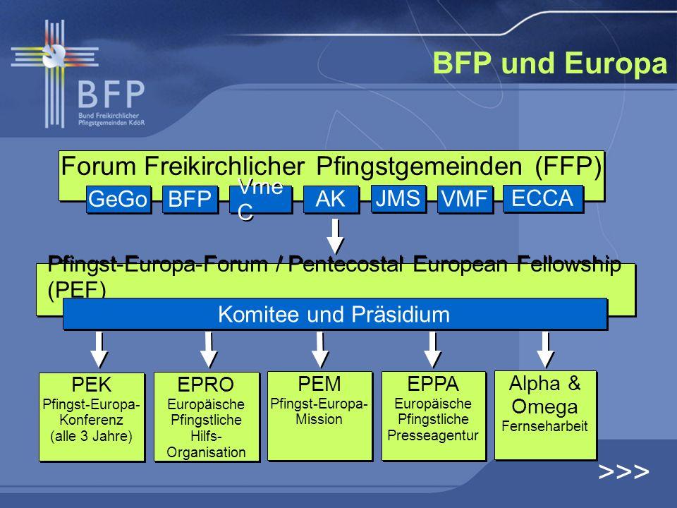 BFP und Europa >>>