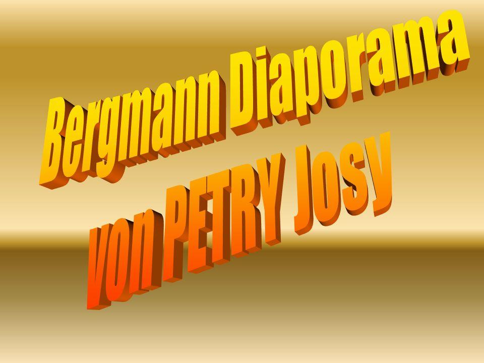 Bergmann Diaporama von PETRY Josy