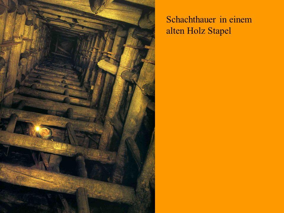 Schachthauer in einem alten Holz Stapel