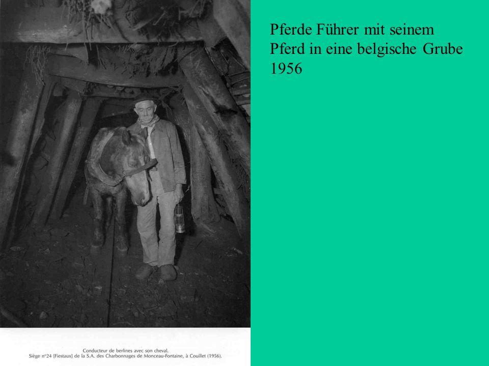 Pferde Führer mit seinem Pferd in eine belgische Grube 1956