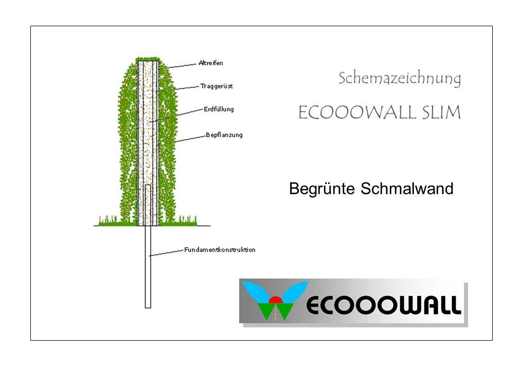 Schemazeichnung ECOOOWALL SLIM Begrünte Schmalwand