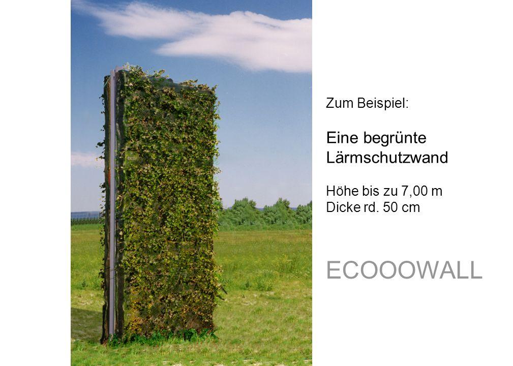 ECOOOWALL Eine begrünte Lärmschutzwand Zum Beispiel: