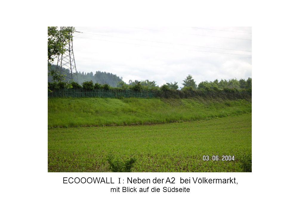 ECOOOWALL I : Neben der A2 bei Völkermarkt,