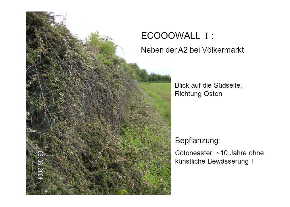 ECOOOWALL I : Neben der A2 bei Völkermarkt Bepflanzung: