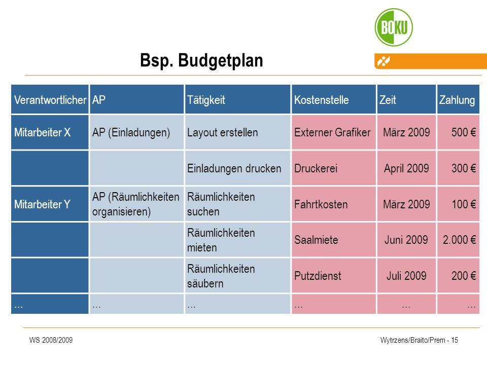 Bsp. Budgetplan Verantwortlicher AP Tätigkeit Kostenstelle Zeit