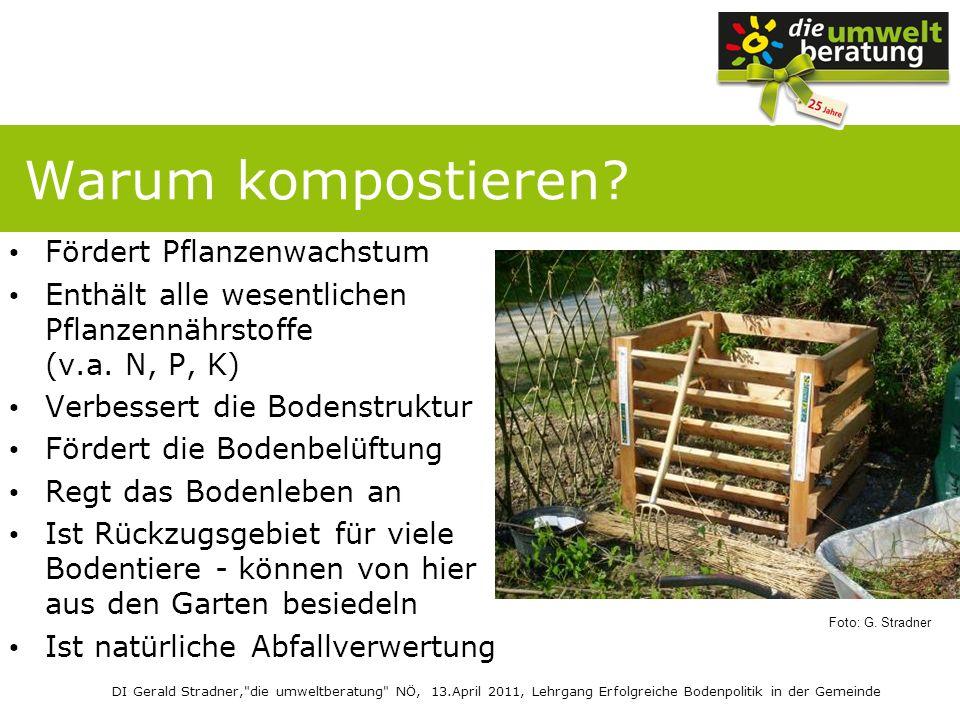 Warum kompostieren Fördert Pflanzenwachstum