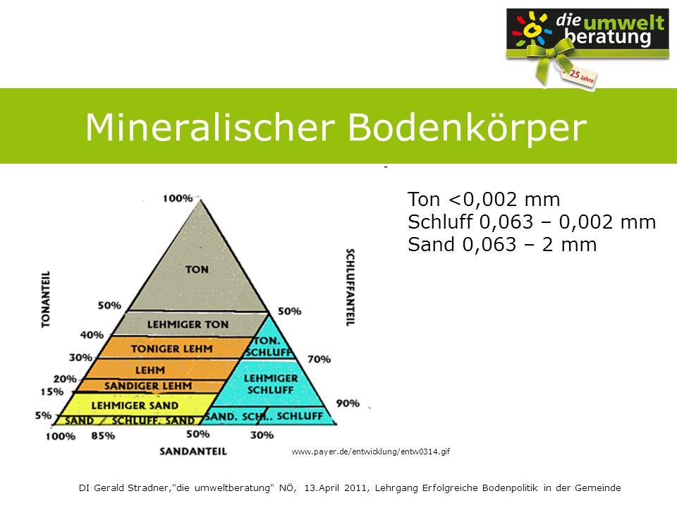 Mineralischer Bodenkörper