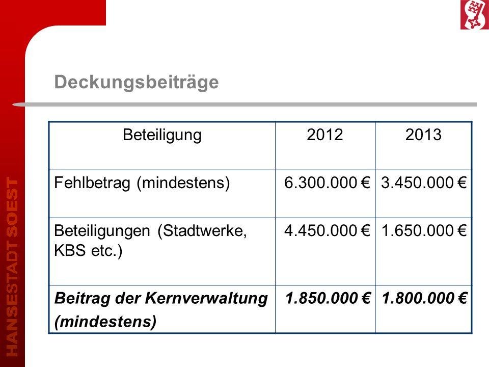 Deckungsbeiträge Beteiligung 2012 2013 Fehlbetrag (mindestens)