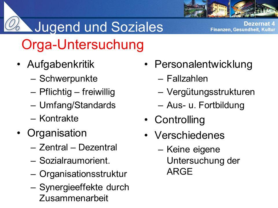 Jugend und Soziales Orga-Untersuchung Aufgabenkritik Organisation