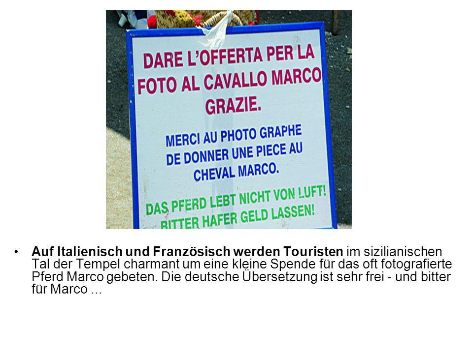 Auf Italienisch und Französisch werden Touristen im sizilianischen Tal der Tempel charmant um eine kleine Spende für das oft fotografierte Pferd Marco gebeten.