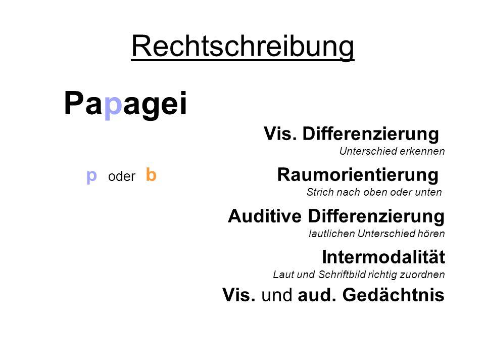 Papagei Rechtschreibung Vis. Differenzierung p oder b Raumorientierung