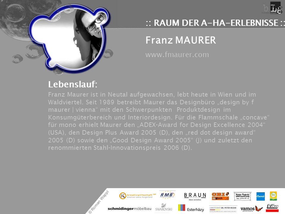 Franz MAURER :: RAUM DER A-HA-ERLEBNISSE ::