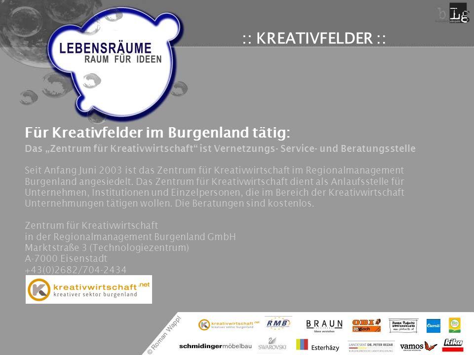 """:: KREATIVFELDER :: Für Kreativfelder im Burgenland tätig: Das """"Zentrum für Kreativwirtschaft ist Vernetzungs- Service- und Beratungsstelle."""