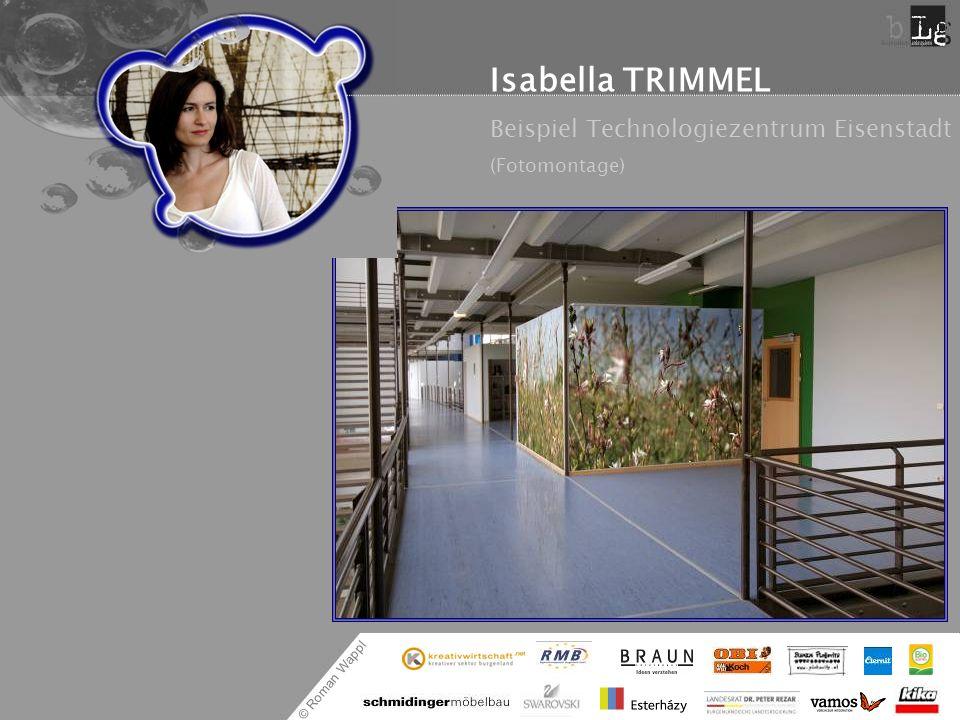 Isabella TRIMMEL Beispiel Technologiezentrum Eisenstadt (Fotomontage)