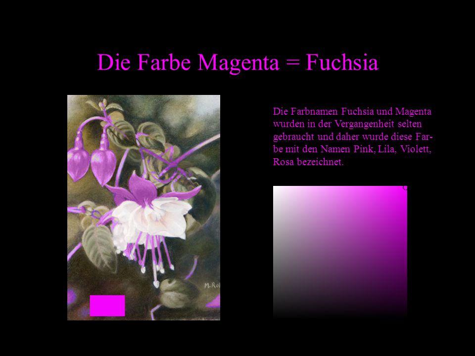 Die Farbe Magenta = Fuchsia