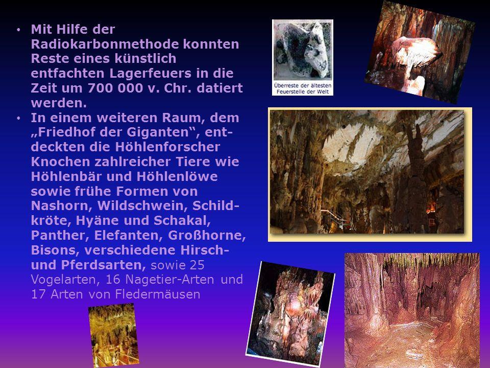Mit Hilfe der Radiokarbonmethode konnten Reste eines künstlich entfachten Lagerfeuers in die Zeit um 700 000 v. Chr. datiert werden.