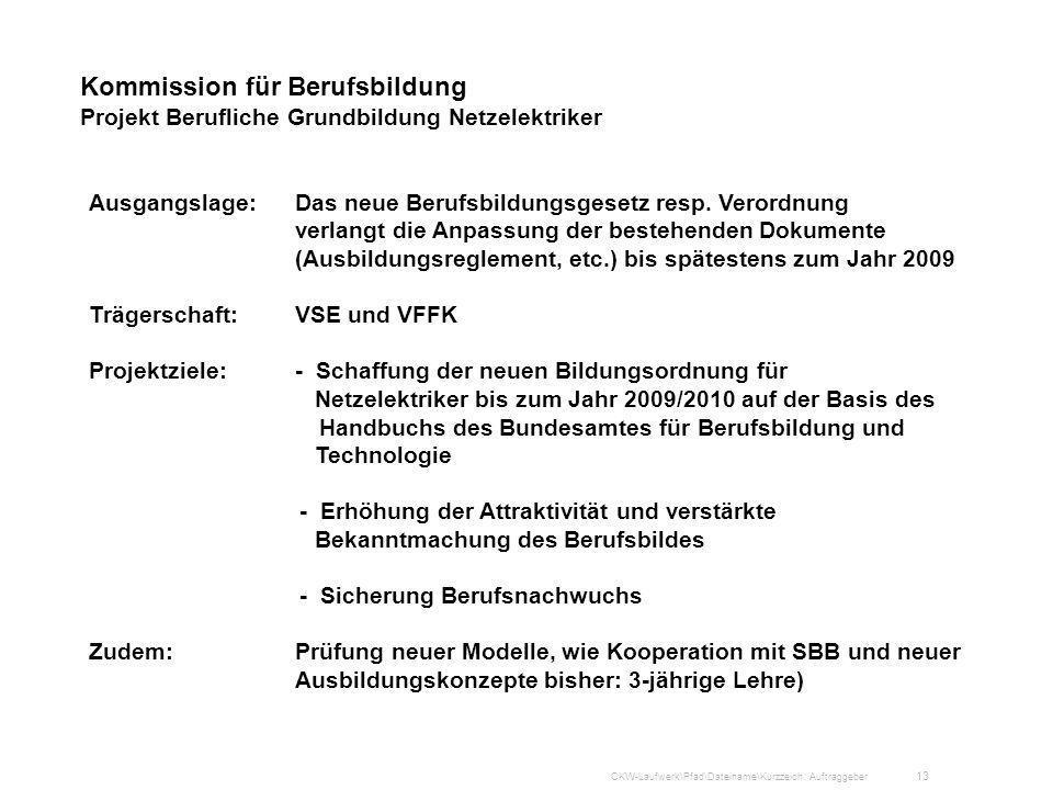 Kommission für Berufsbildung Projekt Berufliche Grundbildung Netzelektriker