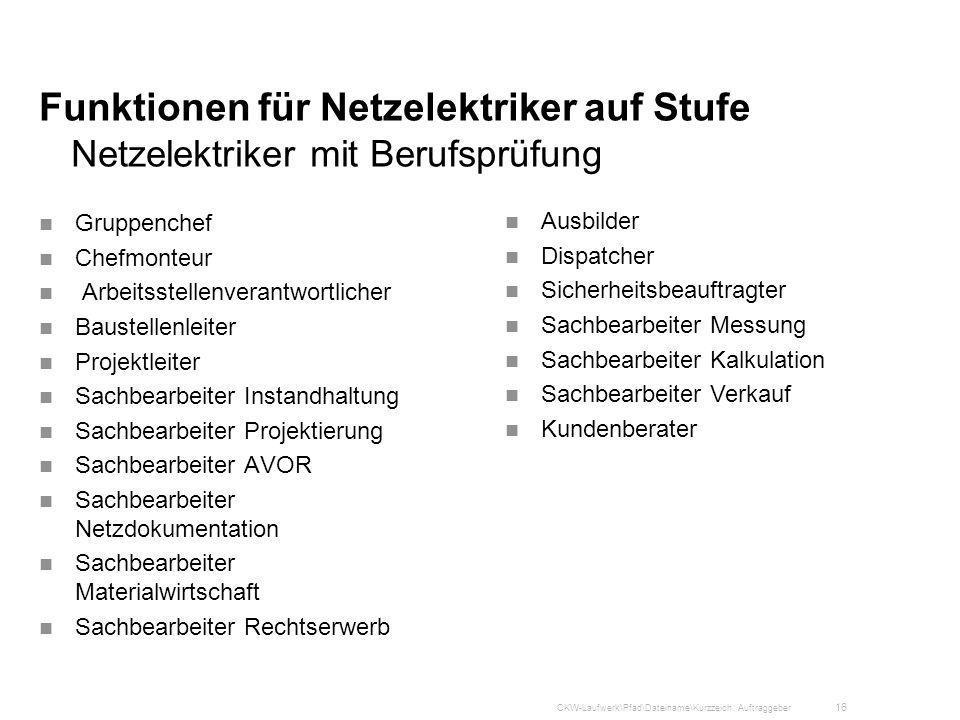 Funktionen für Netzelektriker auf Stufe Netzelektriker mit Berufsprüfung