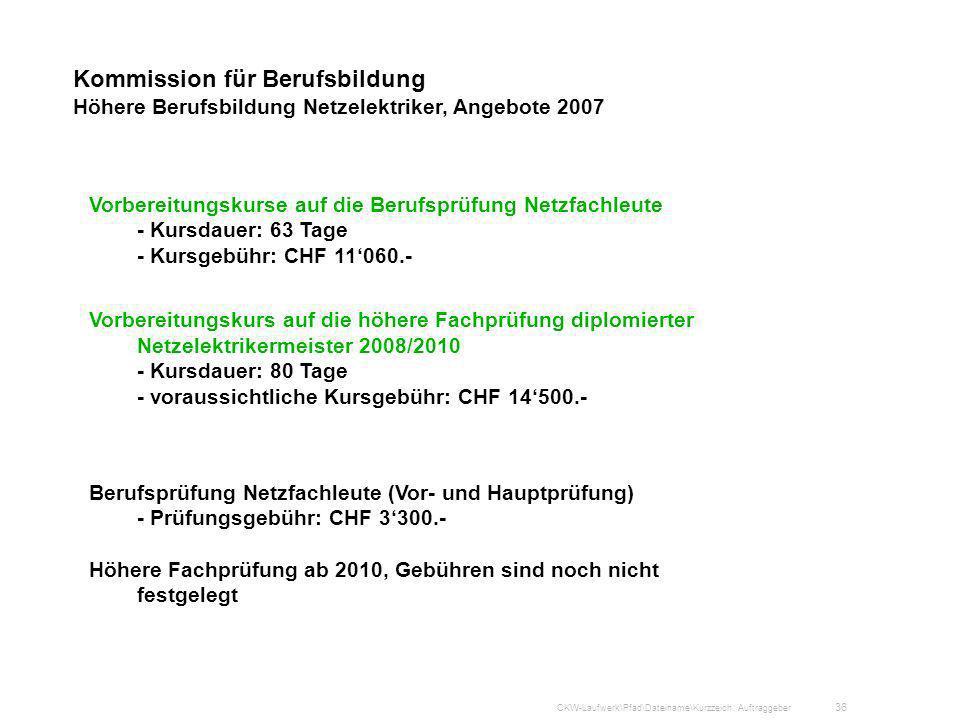 Kommission für Berufsbildung Höhere Berufsbildung Netzelektriker, Angebote 2007