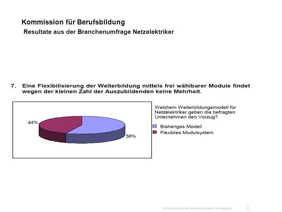 Kommission für Berufsbildung Resultate aus der Branchenumfrage Netzelektriker