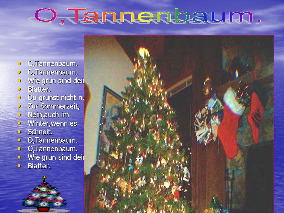 O,Tannenbaum. O,Tannenbaum. Wie grun sind deine Blatter.