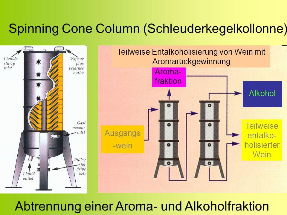 Spinning Cone Column (Schleuderkegelkollonne)
