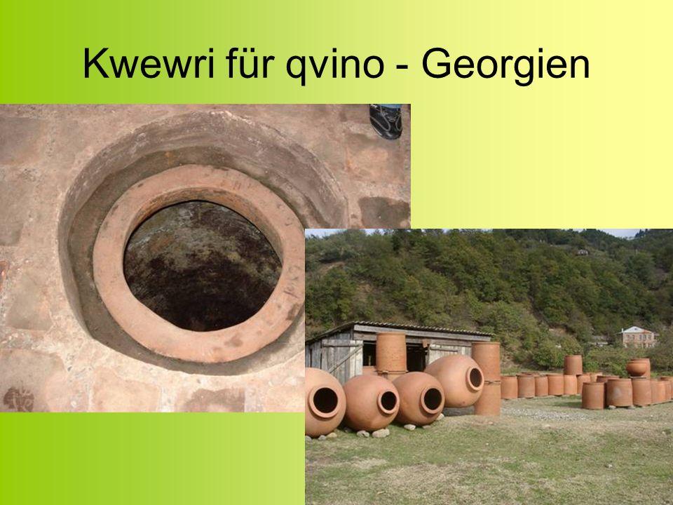 Kwewri für qvino - Georgien
