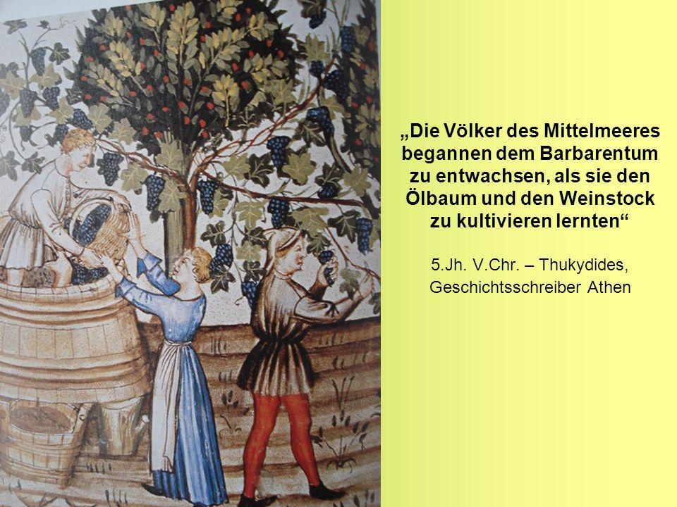 """""""Die Völker des Mittelmeeres begannen dem Barbarentum zu entwachsen, als sie den Ölbaum und den Weinstock zu kultivieren lernten 5.Jh."""