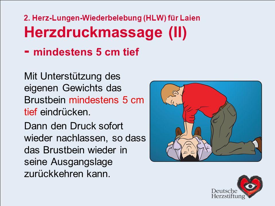 2. Herz-Lungen-Wiederbelebung (HLW) für Laien Herzdruckmassage (II)