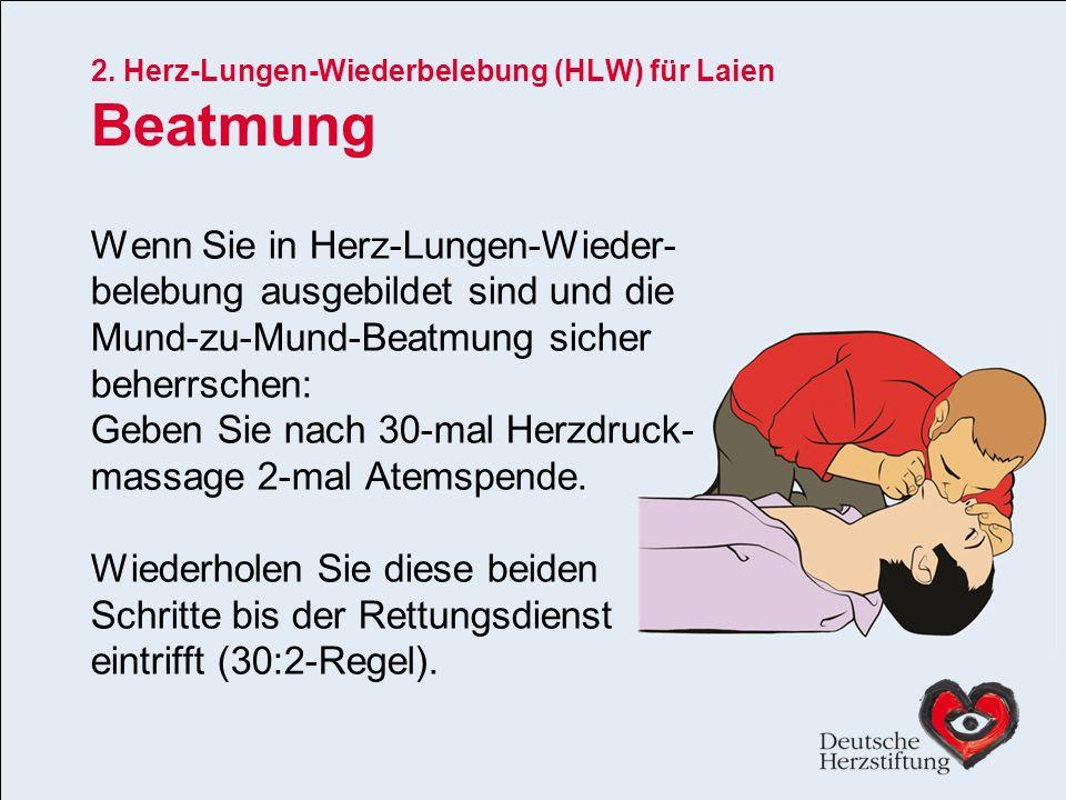 2. Herz-Lungen-Wiederbelebung (HLW) für Laien Beatmung