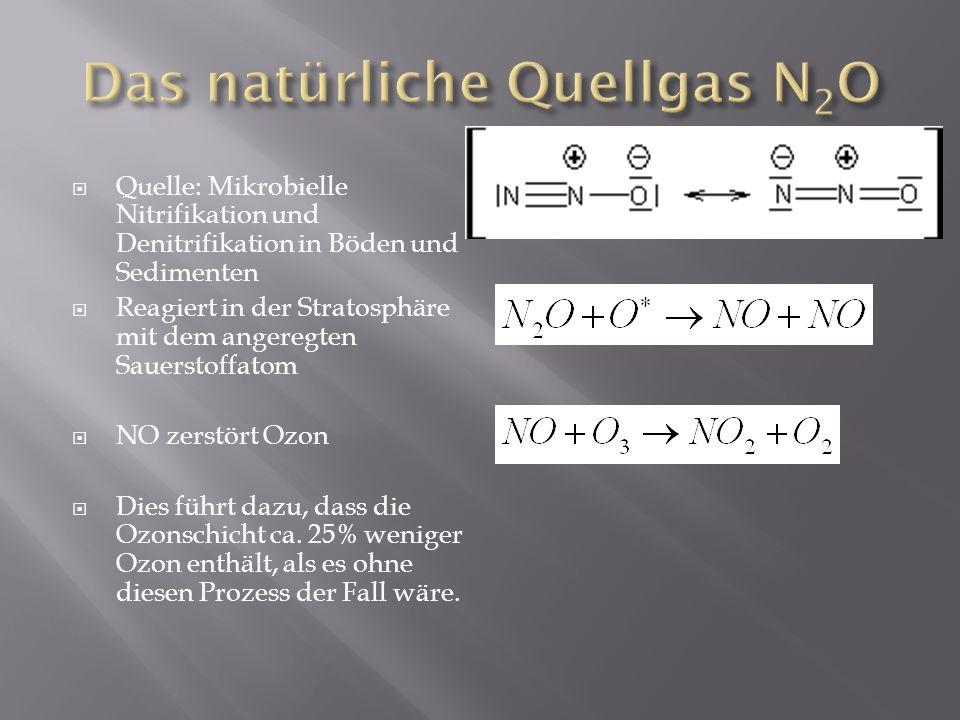 Das natürliche Quellgas N2O