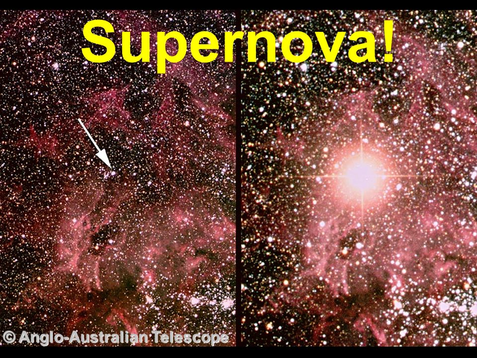 Supernova! © Anglo-Australian Telescope