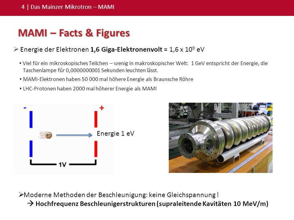 4 | Das Mainzer Mikrotron – MAMI