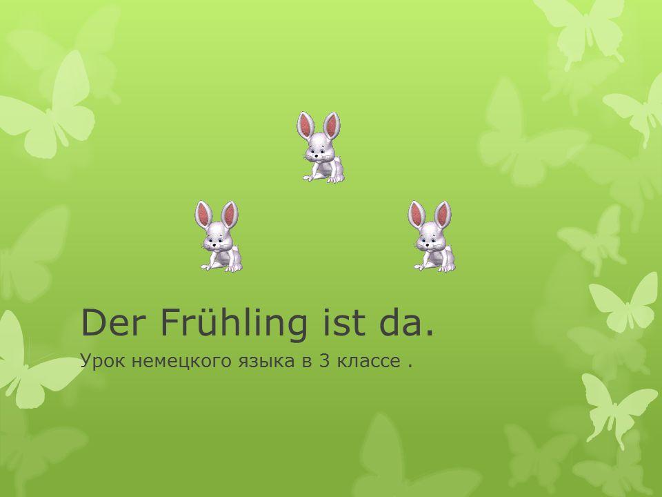Урок немецкого языка в 3 классе .