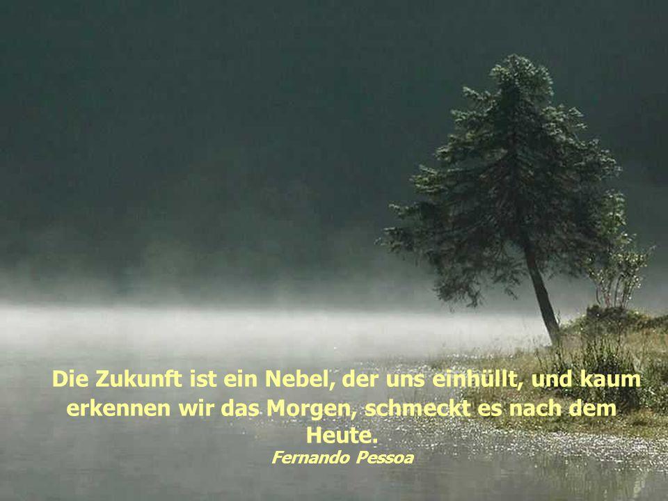 Die Zukunft ist ein Nebel, der uns einhüllt, und kaum erkennen wir das Morgen, schmeckt es nach dem Heute.